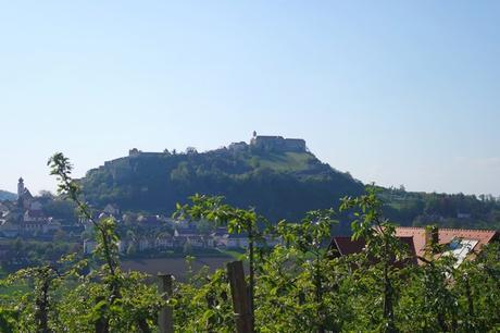 autriche styrie riegersburg château vignes