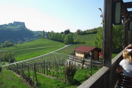 autriche styrie riegersburg château heuriger wippls