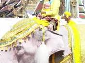 éléphants blancs défilent Bangkok l'honneur Rama10