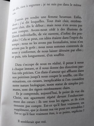 Chronique de « Sérotonine » de Michel Houellebecq