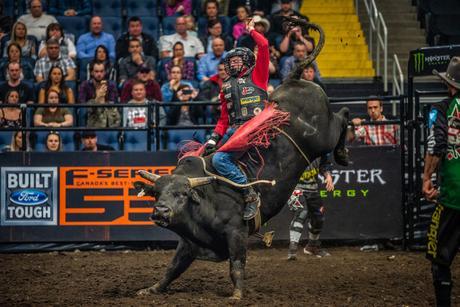 PBR canada iron cowboy