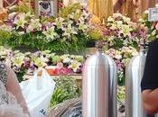 Kanchanaburi, millions bahts moines pour funérailles d'un chien carlin