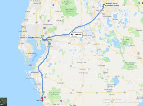 [FLORIDE#13] Roller skate à Tampa et derniers jours à Venice