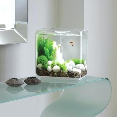 modern fish tank flow aquarium aquarium aquarium fish tank freshwater aquarium modern fish tank design