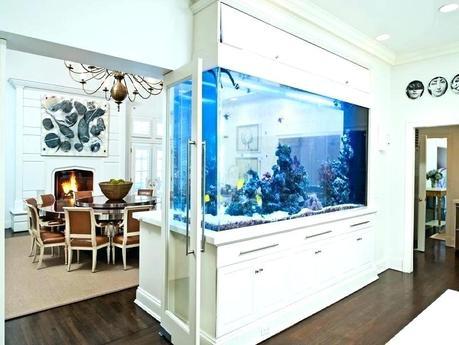 modern fish tank modern aquarium design ideas fish tanks modern aquarium modern fish tank designs