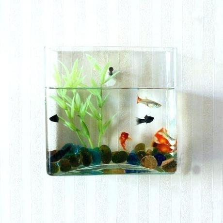 modern fish tank small modern fish tank modern contemporary fish tanks are super cool they these ultra modern looking modern fish tank designs