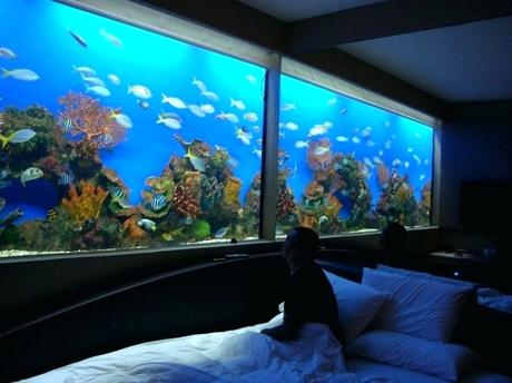modern fish tank modern photos of fish tank bedroom small vanity collection design pictures tanks built into walls modern fish tank cabinet