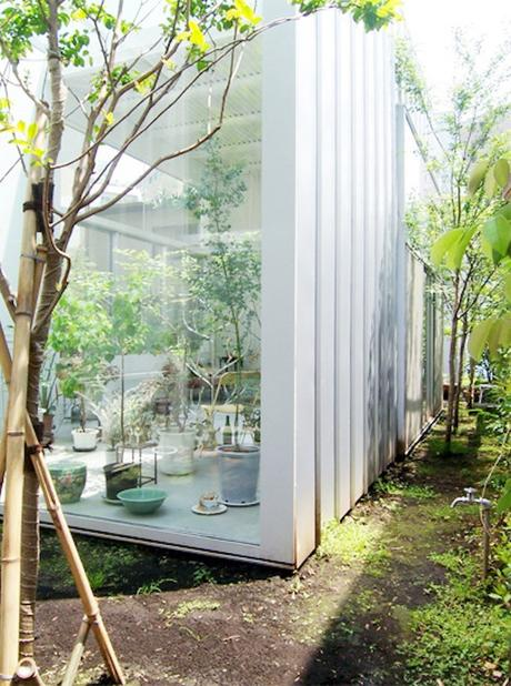 house a de ryue nishizawa jardin terrasse outdoor plantes vertes baies vitrées - blog déco - clem around the corner