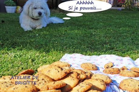 Cookies diaboliques aux pépites chocolat