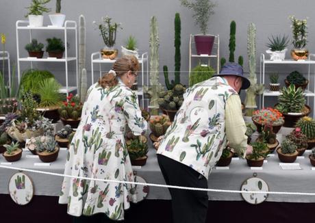 Chelsea flower show 2019 top 10