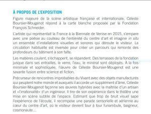 Fondation François Schneider- 8 Juin au 22 Septembre 2019-  exposition Céleste Boursier-Mougenot