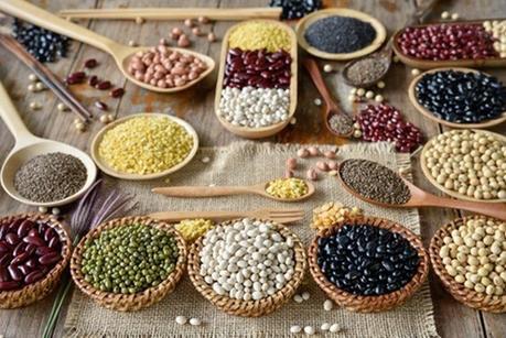 Source protéine végétale bio : quels sont les aliments riches en protéines végétales ? La liste où en trouver !