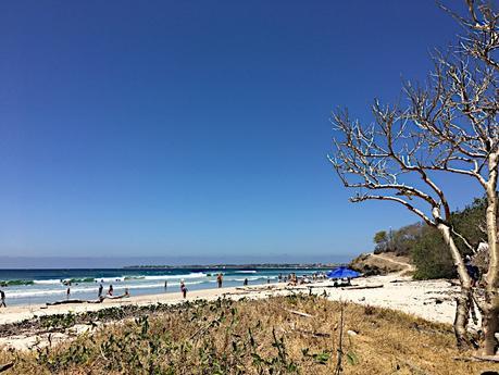 Une semaine à Sayulita au Mexique