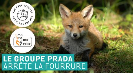 Prada, sans-fourrure et avec label Fur Free Retailer