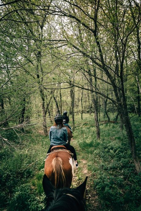 QUÉBEC | Un weekend dans les Cantons-de-l'Est
