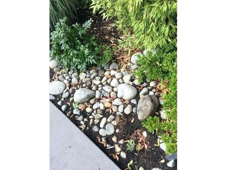 free landscaping rocks free garden rocks stones free landscaping rocks calgary