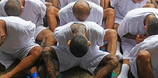 PSYCHOLOGIE : Les pratiques des gangs reflètent le genre humain !