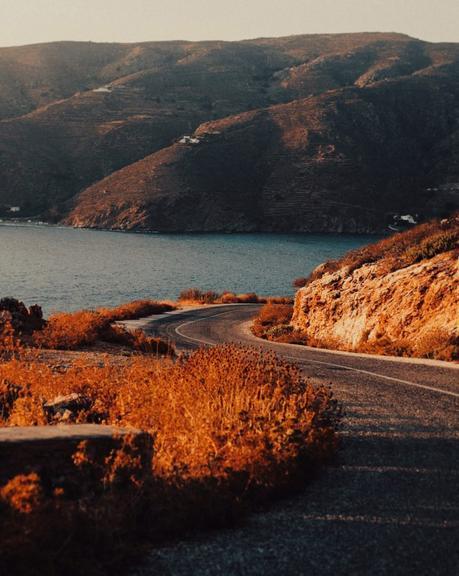 The long way home : Iris Humm expose chez Los Patos