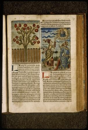 1482 Mirouer de la redempcion de l'umain lignage BM Lyon Res Inc 1043, f. 349