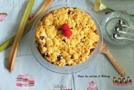 Crumb cake à la rhubarbe et à la framboise pour fêter les papas!