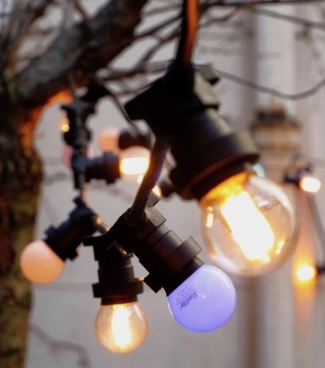 guirlande ampoules noire et 10 ampoules lumineuses blanches chaude décoration extérieure coloré clematc