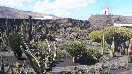 Jardin de cactus de Guatiza - Lanzarote