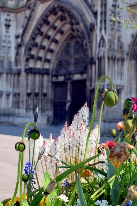 Toul au printemps © French Moments