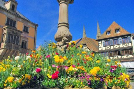 Obernai au printemps © French Moments