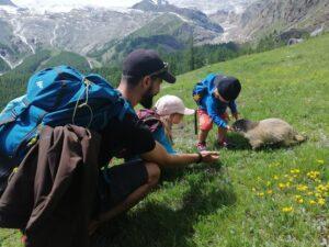 Randonnée en famille : à la découverte des marmottes de Saas-Fee