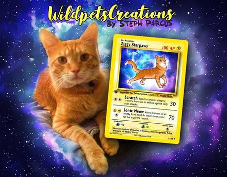 Elle réalise des cartes Pokemon à l'effigie de votre animal de compagnie