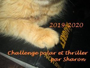 Challenge Polar et Thriller 2019-2020