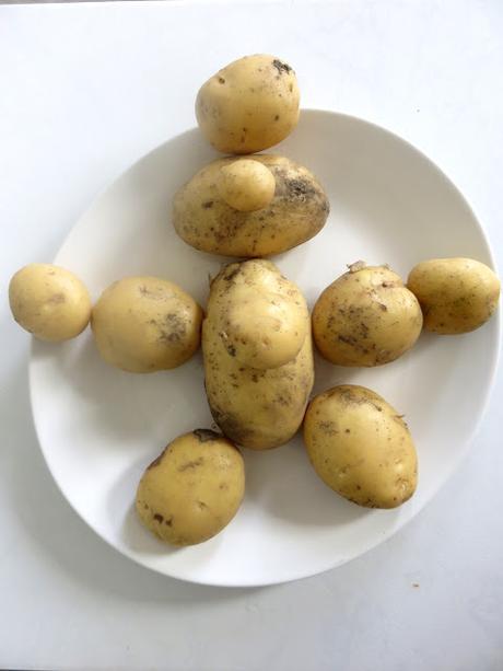On garde la patate...
