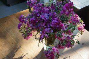 Anatomies désirantes, en bouquet, fenêtre ou chorale