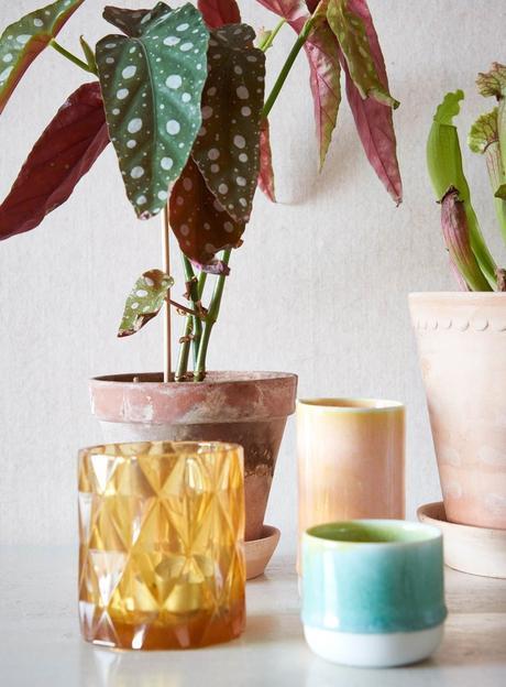 papier peint tapisserie éco-responsable biodégradable écologique bio - blog déco - clem around the corner