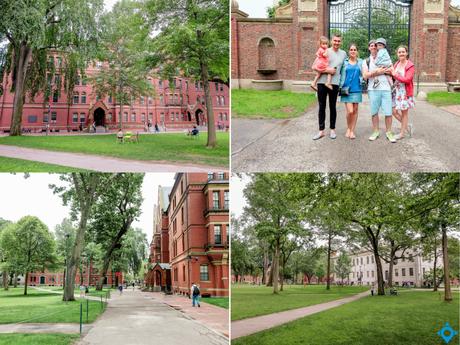 visiter Harvard campus