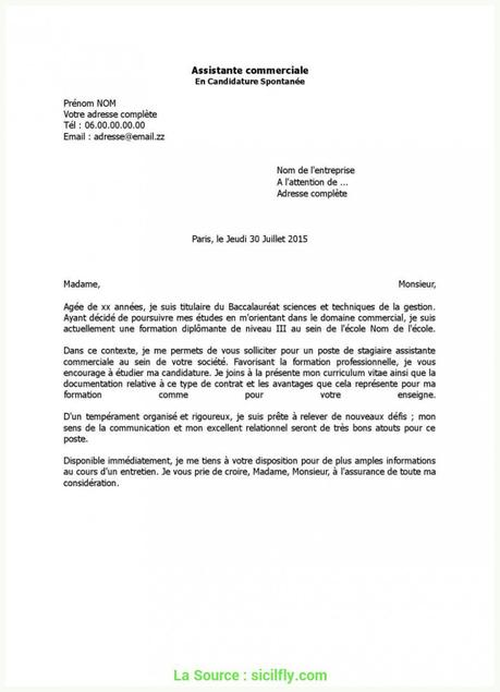 Lettre De Motivation Bts Assistant De Gestion Pme Pmi