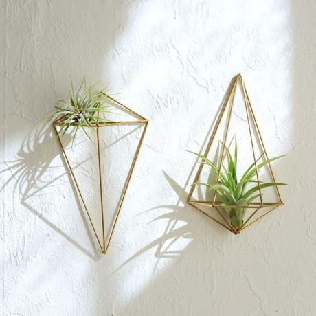 himmeli diy décoration végétale plante verte succulentes - blog déco - clem around the corner