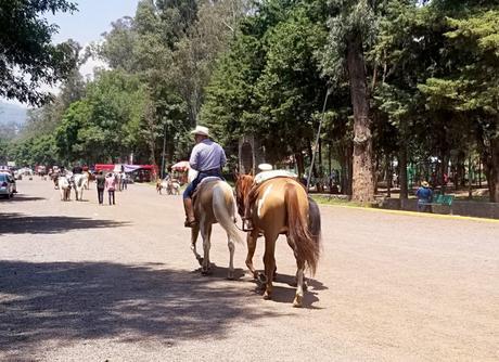 Tout savoir pour visiter Xochimilco à Mexico