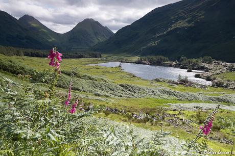 ECOSSE : SKYE ISLANDS & HIGHLANDS : LA NATURE A L'ETAT BRUT