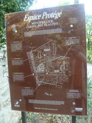 jardin,botanique,fleurs,plantes,histoire,roi,richer de belleval,rabelais