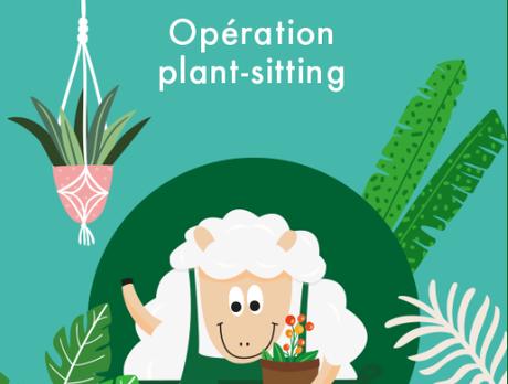 Je pars en vacances...et mes plantes ?
