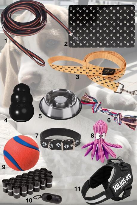 accessoire équipement chien longe laisse gamelle anti glouton jouets distributeur ramasse crotte- blog déco - clematc