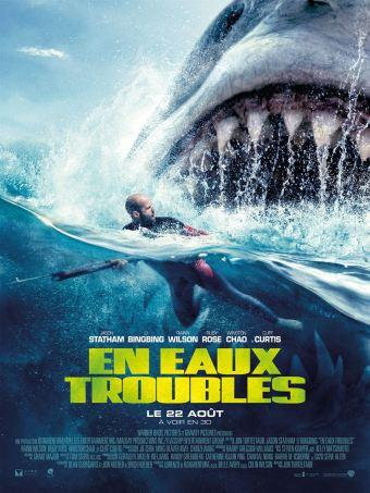 Chronique film : En eaux troubles