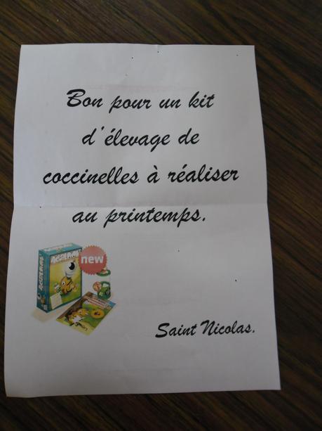 St Nicolas nous a fait un cadeau surprise | elevagecoccinelles