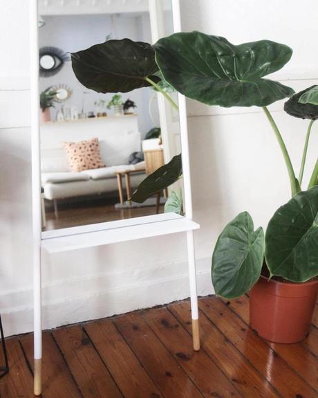 salon plante verte miroir scandinave blanc bois reflet sur le salon - clematc