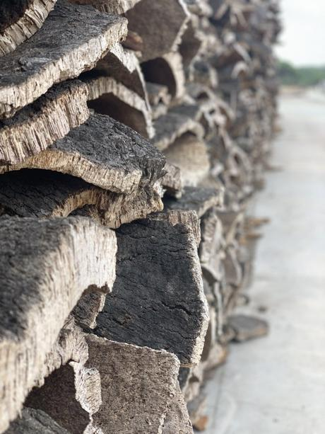 écorce arbre entrepôt Portugal Lisbonne matériau écolo clematc