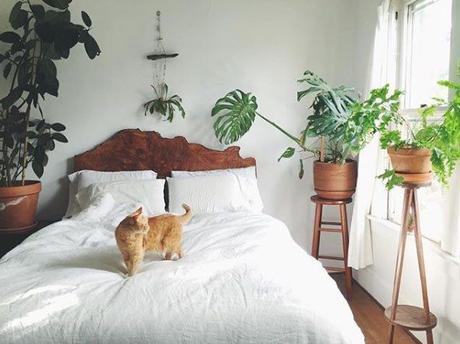 Une chambre pour bien dormir