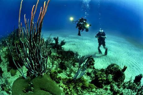 Destination la Polynésie