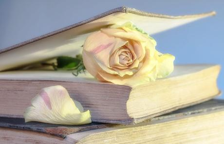 Des livres pour grandir et se transformer1