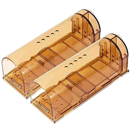 amazon mouse trap amazon mouse trap humane